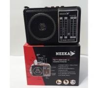 Neeka NK-204USB+аккум+mp3